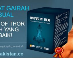 Bahawalpur, book, capsules, Hammer of Thor, how to buy, in Lahore, Islamaabd, karachi, magnus, malaysia, marvel, medicine, mgolnir, Multan, necklace, peshawar, price, ptf, quetta, Rawal pindi, real, replica, review hammer of thor, supplement, thorshammer, toy, viagron